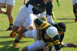 rugby_o14A_4