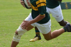 rugby_o16A_41